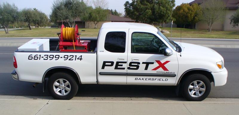 Bakersfield pest control, Pest X